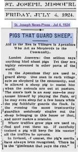 Newspaper Item 1924