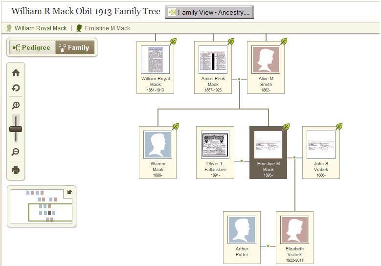 Amos Family Tree