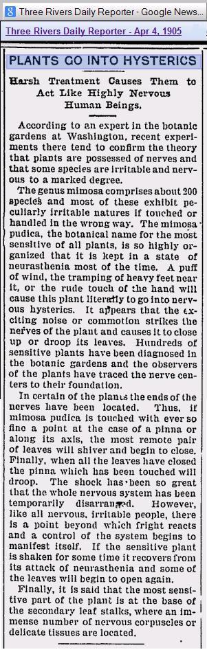 Plants Go Into Hysterics 1905