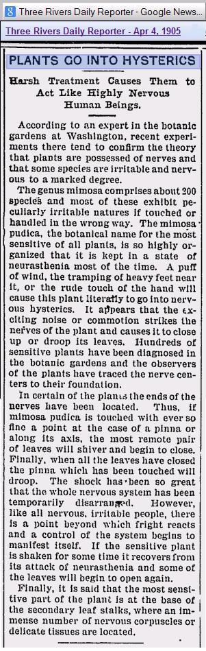 Plants Go Into Hysterics 1905