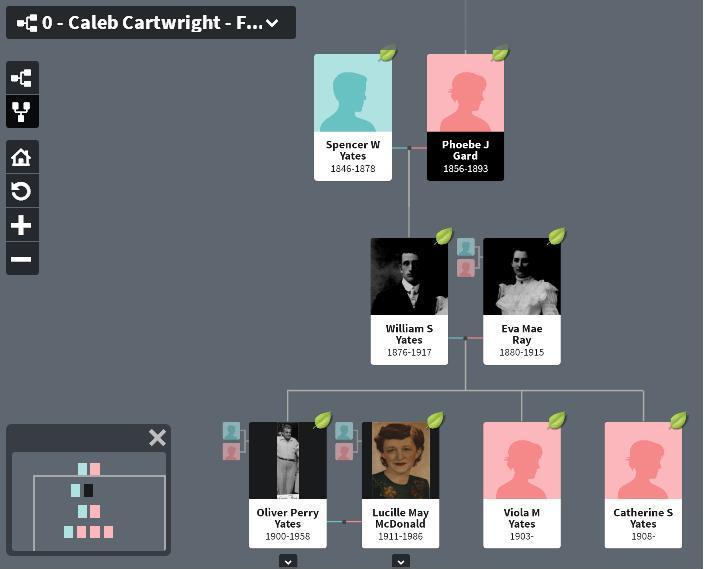 Yates family tree - where is Sylvia