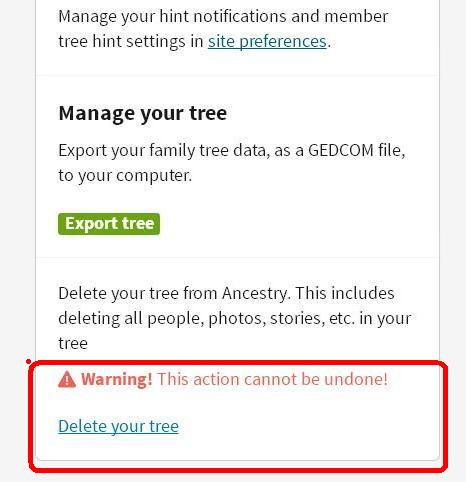 test tree 06