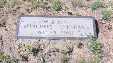 Unknow - Evacuees