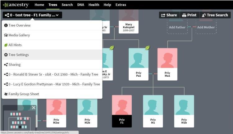 FB - 2nd cousins - test tree 5